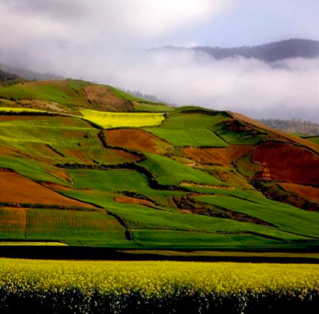 "I will leave close this window with this beautiful picture of the Iranian (Green!) countryside. Please click on the ""The Natural Green Iran"" link above for more photos."